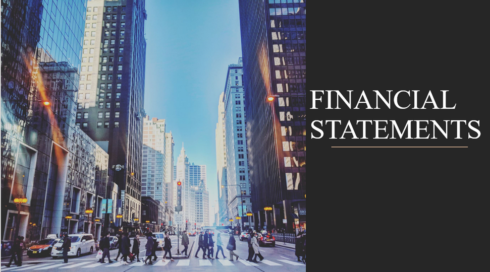 Financial statements for the fiscal year ended 31 December 2019