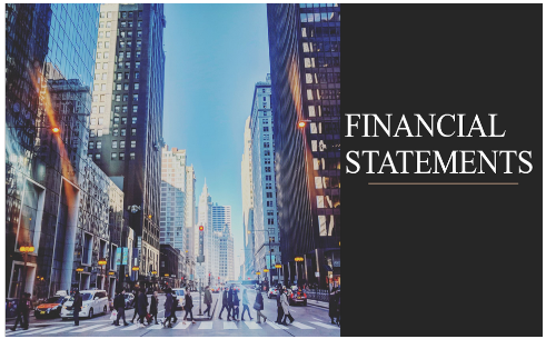 Financial statements for the fiscal year ended 31 December 2020
